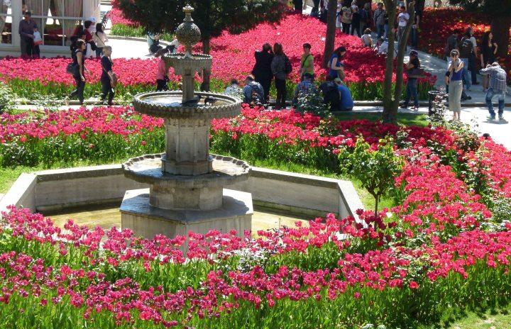 taman tulip di turki
