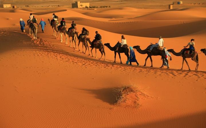 tour ke maroko pengalaman naik unta di gurun sahara